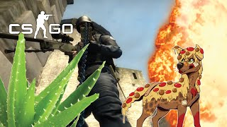CS:GO Funny Moments - Deluxe The Gardner (CS:GO Competitive Matches With The Crew & Friends)