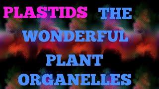 PLASTIDS THE WONDERFUL  PLANT ORGANELLES