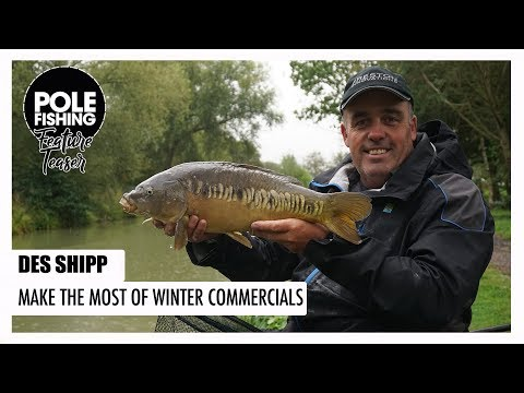 Pole Fishing | Feature Teaser | Des Shipp