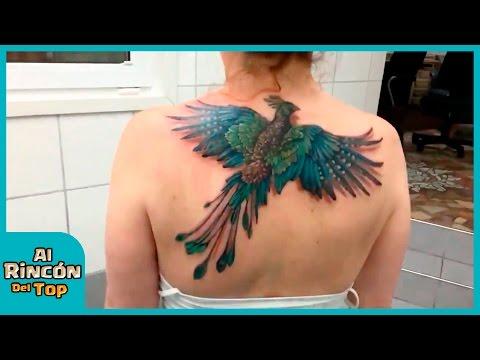 Tatuaje De Ave Fénix Que Tiene Vida Youtube