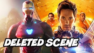 Ant-Man and The Wasp Deleted Scene - Avengers 4 Foreshadowing Explained