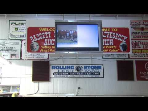 Bassett Livestock Auction uses Broadband