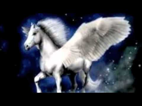 what is a pegasus unicorn called