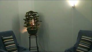 Столовая, Вход в Гостиную, Комната для психологической разгрузки (релаксация)(Четвёртое видео из линейки видео, посвящённой реабилитационно-оздоровительному центру Русь, в котором..., 2016-12-10T21:17:27.000Z)