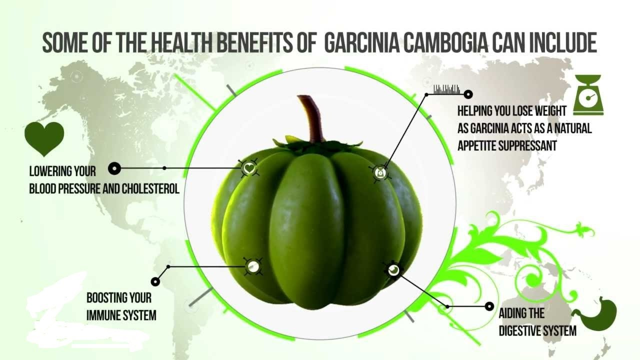 Image result for Benefits of Garcinia Cambogia