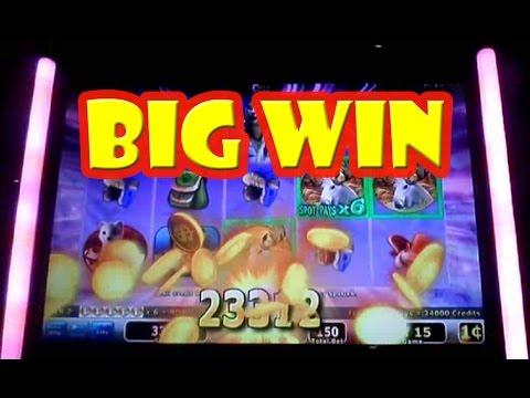 """Wild Arctic Slot Machine"" BIG WIN....."