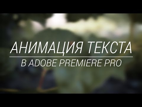 Выезд текста из-за линии в Adobe Premiere Pro