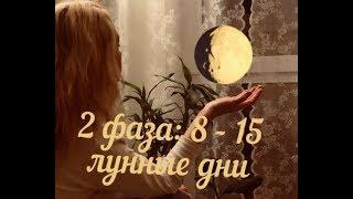 2 фаза луны: 8 - 15 лунный день