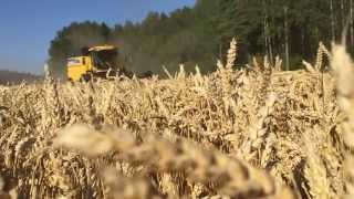 harvest 2015 in Norway I Agronorth