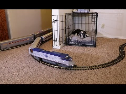 An Amtrak Passenger Train Rounds Out My Model Train Collection