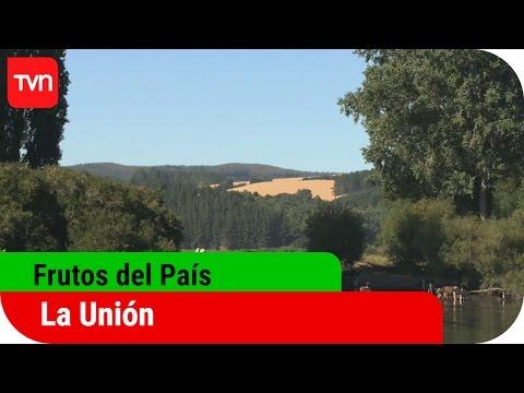 Frutos del país | T12E10: La Unión