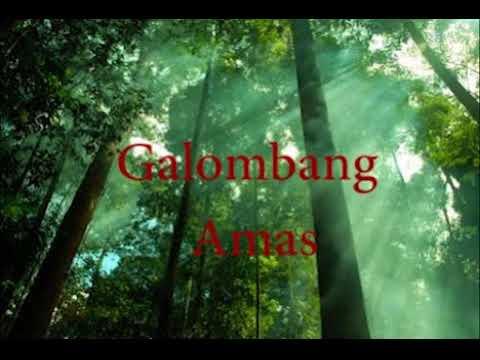 DAYAK ~ GALOMBANG AMAS Mp3
