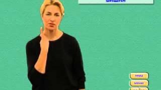 Уроки жестовой речи 1