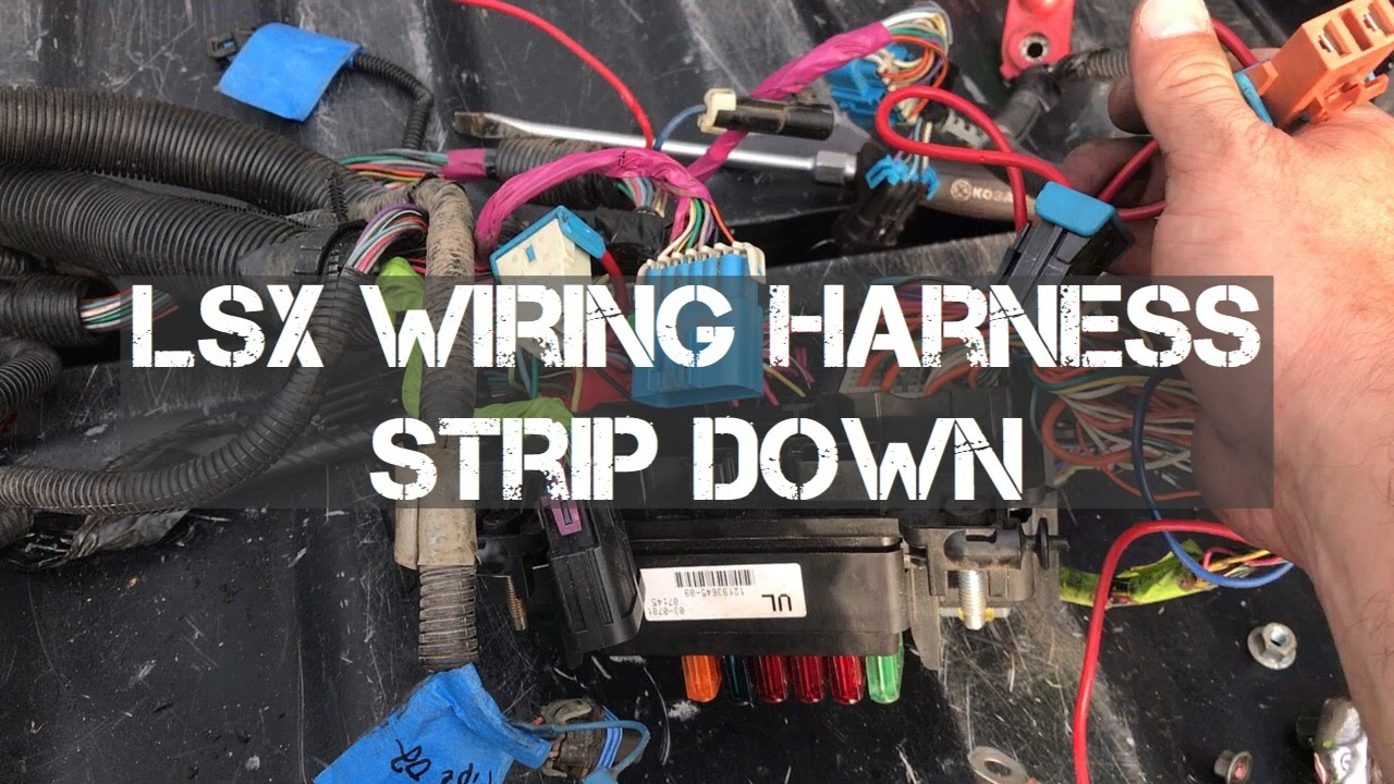 Build LSX Wiring Harness Strip Down For The FJ60 YouTube – Lsx Wiring Harness