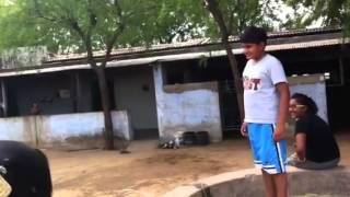 panchal farmhouse,kadi,gujarat,india