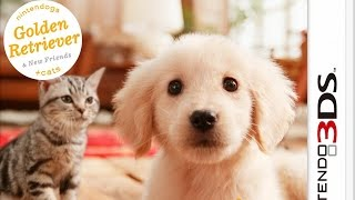 Nintendogs plus Cats French Bulldog and New Friends Gameplay {Nintendo 3DS} {60 FPS} {1080p}
