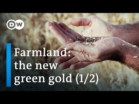 The dark side of agriculture in Ethiopia (1/2) | DW Documentary (Farming documentary)