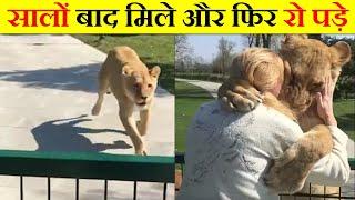 जानवरों का सच्चा प्यार देख के रो पड़ोगे। ANIMALS TRUE LOVE WITH OWNERS.