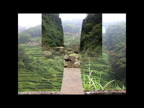 Nantou Camp