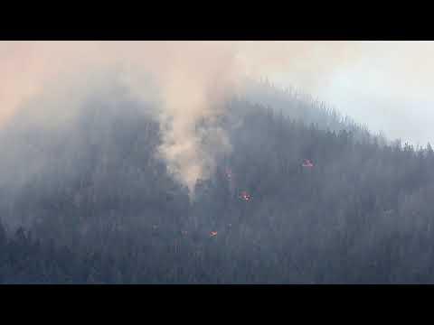 Watch The Museum Fire Burn North Of Flagstaff, Arizona