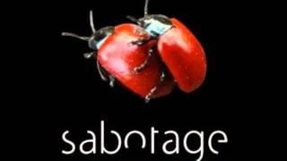 Sabotage: Разговоры на кухне 9 - Порно