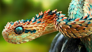 Top 10 Rarest Animals