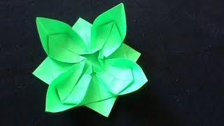 Cara Membuat Origami Bunga Seroja | Origami Bunga dan Tanaman