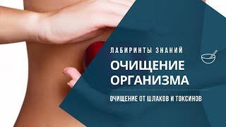 Очищение организма от паразитов и шлаков - Разгрузочно диетическая терапия