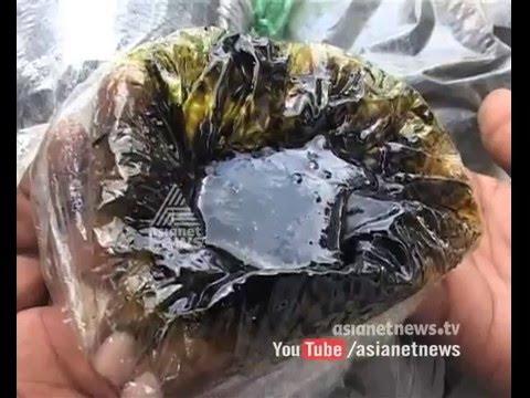 11 KG hashish oil caught at Kumily Idukki   FIR 19 Apr 2016