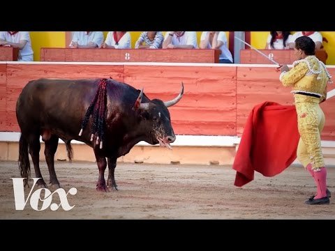 Watch what really happens after the Running of the Bulls