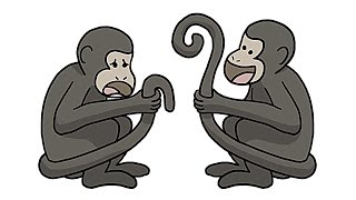 Repeat youtube video Why Only Some Monkeys Have Awesome Tails