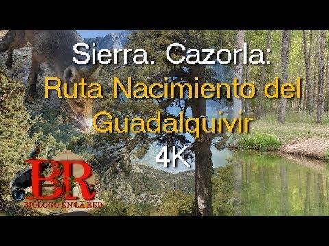 nacimiento-del-guadalquivir.-ruta-en-el-parque-natural-de-cazorla,-segura-y-las-villas.-4k