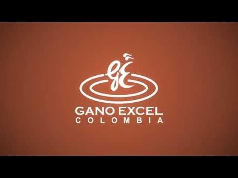 Tutorial compra en línea Gano Excel Colombia