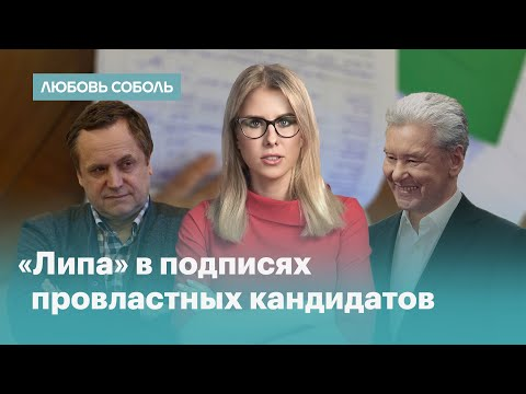 В неравных условиях: как идёт проверка подписей кандидатов в Мосгордуму