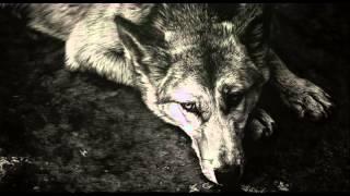 Валентин Гафт - Отчего так предан пес