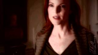 The Weasel and Bree • Desperate Housewives -crossover- The Lost Room •