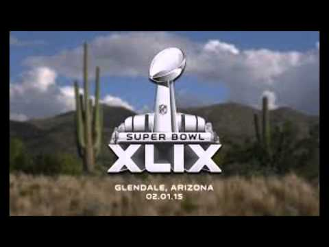 2014-2015 NFL Playoff Predicitons