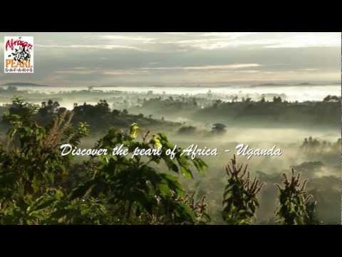 Uganda Safari Guide - APS_overview.mp4