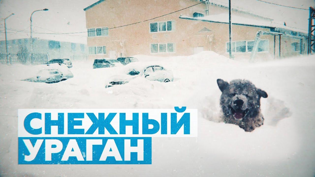 «Снега — по самый козырёк дома»: видео с Сахалина, где бушует циклон
