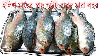 Hilsa Fish Frozen    ইলিশ মাছ  সংরক্ষণ    ইলিশ মাছের স্বাদ অটুট রাখুন সারা বছর