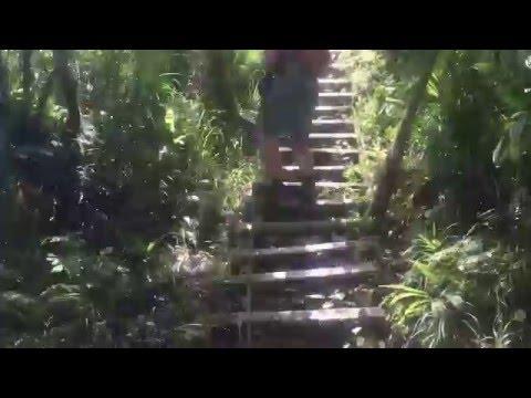 Trevor descending steps while hiking in American Samoa