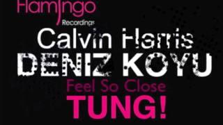 Feel So Close w/ Tung (Axwell Bootleg)- Deniz Koyu w/ Calvin Harris