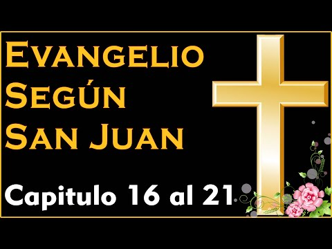 Evangelio Segun San Juan Capitulo 16 Al 21 Biblia Catolica Youtube