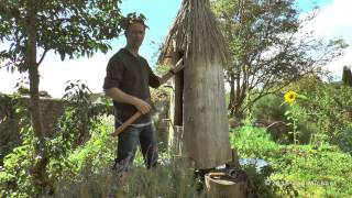 Log Hive Beekeeping - Natural Beekeeping Trust - Zeidler Tree Beekeeping