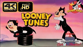 LOONEY TUNES (Looney Toons): A Tale of Two Kitties (1942) [ULTRA HD 4K Cartoons for Children]