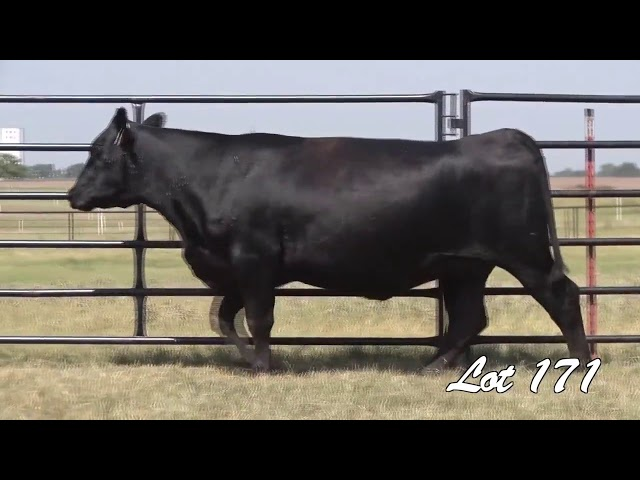 Pollard Farms Lot 171