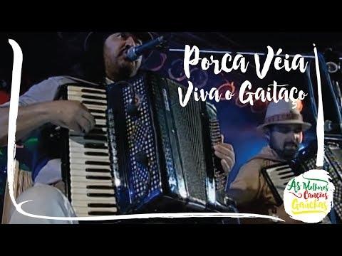 BAIXAR CD PORCA VEIA