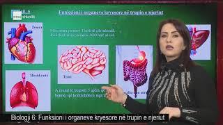 Biologji 6 - Funksioni I Organeve Kryesore Në Trupin E Njeriut