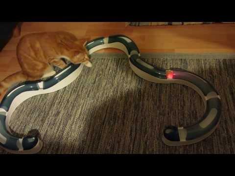 Catit Senses & Senses Tempo - Spielschiene für Katzen