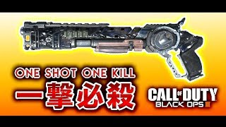【BO3実況】一撃必殺武器でS&Dにてキルしまくり大暴れ!www【ハセシン】p…